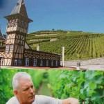 上は拠点を構えるリボヴィレの急勾配の畑。下は兄で醸造家のピエール。