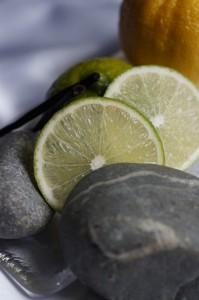 ル・メニル・シュール・オジェのイメージ:石を思わせる緊張感、ライムのような香りで、芯が強い。