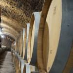 樽貯蔵庫。樽の大きさは228リットルと400リットルの2種類。前者では種がひとつで小粒なブドウ、後者では種が2つで大粒なブドウを仕込む。