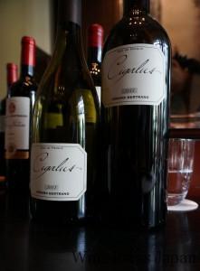 「シガリュス」の白と赤。赤はメルロ&カベルネ・ソーヴィニヨンで、こちらも美味でした♪