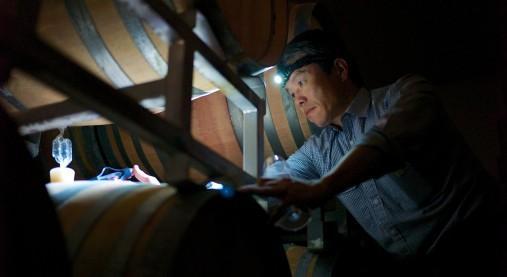 真っ暗闇のセラーで樽から試飲用のワインを汲み取る楠田浩之さん。