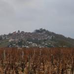 サンセールの丘