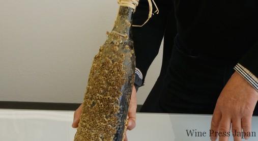 15ヶ月でこんなに貝殻が! コルク栓の上にはワックスでシールを。