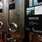 アヤラの醸造用タンク。小ぶりのステンレスタンクがたくさん。