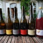 ドメーヌ・デ・シェネのワインたち。