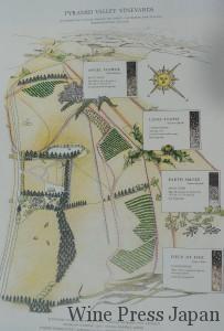 ピラミッド・ヴァレーの畑地図。