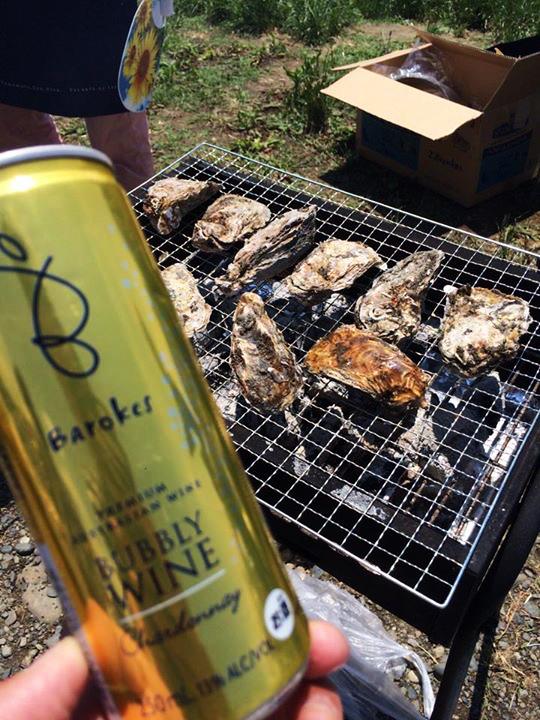 オーストラリアで造られている缶ワイン「バロークス」!