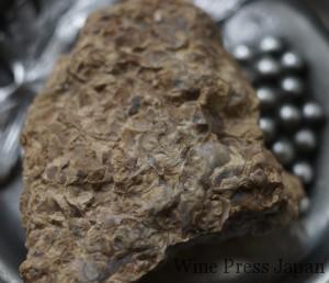 これが牡蠣殻入りのキンメリジャン。