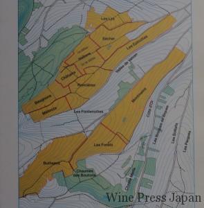 黄色の畑が1級。下方の丘にモンマンがある。