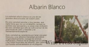 珍しい、アルバリン・ブランコ。スペイン語あ読める方は是非解説をお読みください。